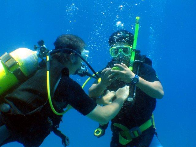 PADI Open Water DIver Course East Timor