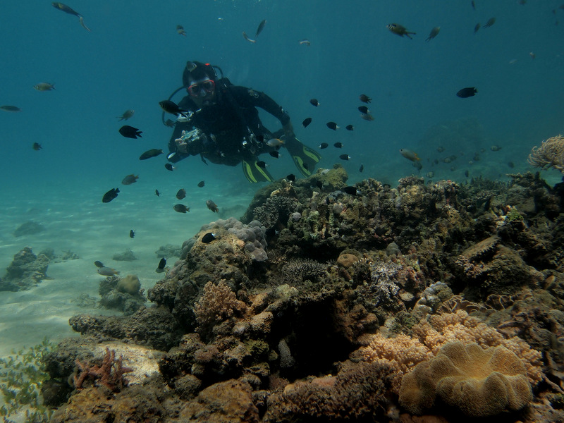 Scuba Diving the Coral Triangle