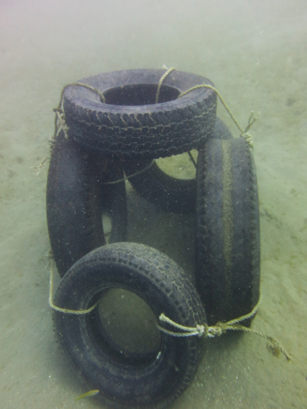 One of the Completed Tire Structures